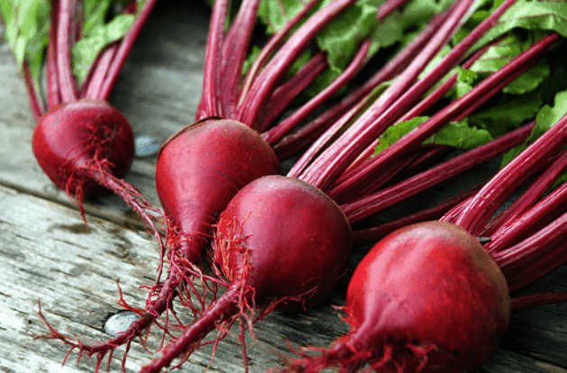 beetroot-uprooted