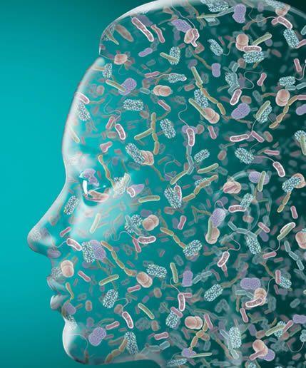 Microbiome Head