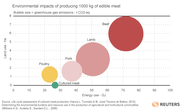 Cultured Meat Eco Impact