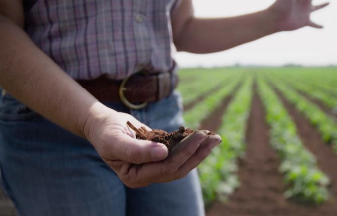 SP Grabbing Soil