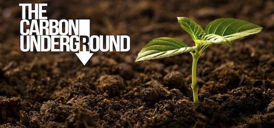 Carbon Underground